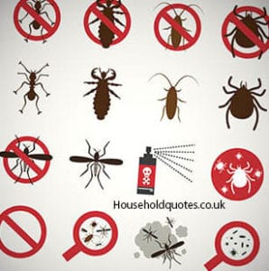 How Much Is Pest Control?
